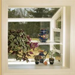 Greenhouse Window